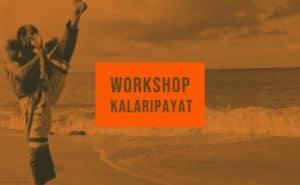 Kalaripayat workshop festival chalo